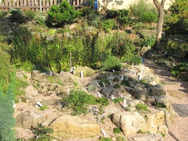 http://steingarten-raritaeten.de/s/cc_images/cache_2414391212.jpg